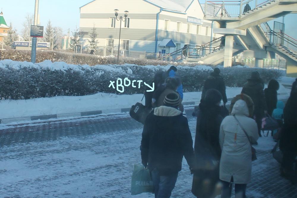 """Толстые куропатки """"десятирублёвого """" города. Красноярский край,Сибирь"""