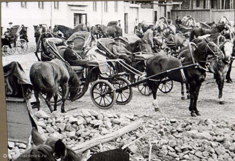 сбор лошадей для армии