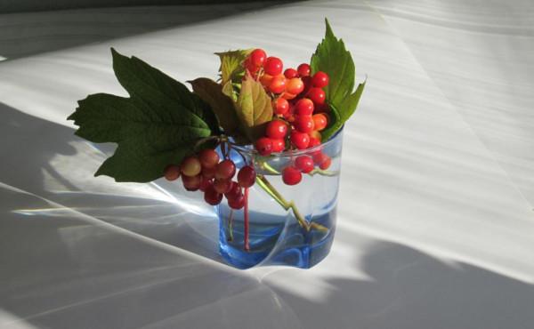 Калина в голубом стакане