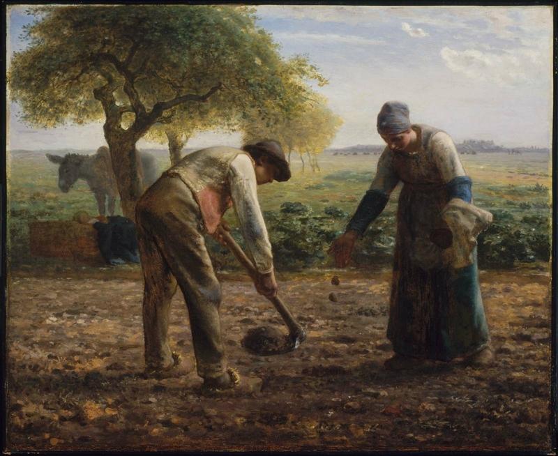 Potato Planters ab 61
