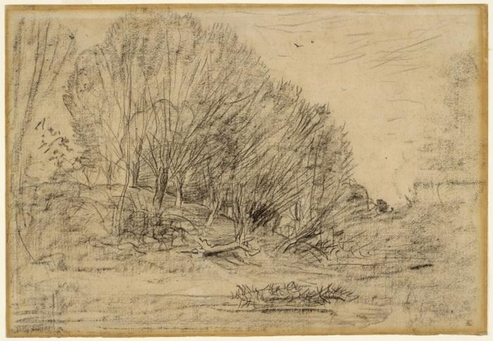 Trees on a Hillside, 1860s