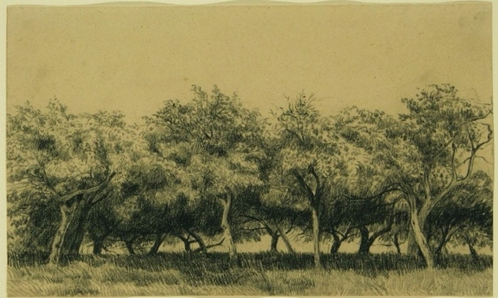 Verger normand (Obstgarten in der Normandie), um 1867-75