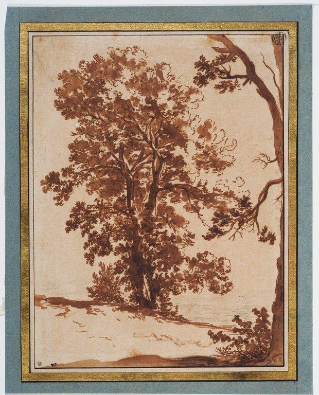 Etude de paysage étude d'arbres