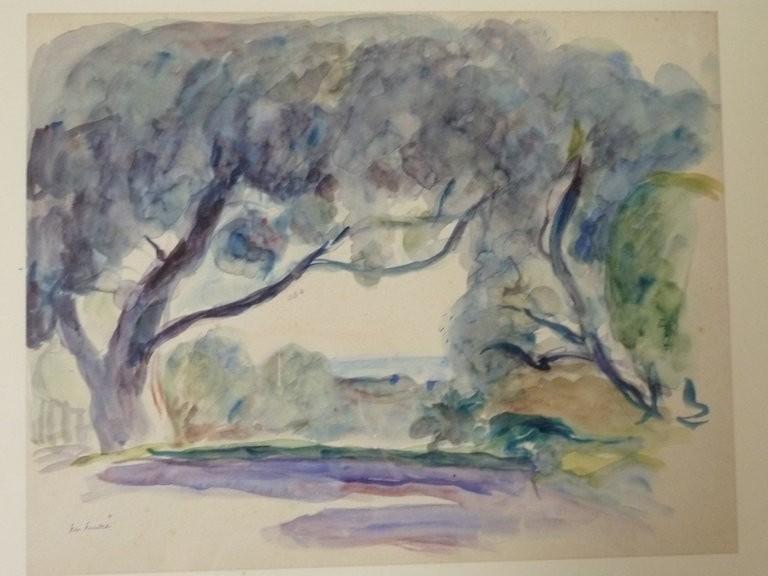 Les oliviers de Cagnes