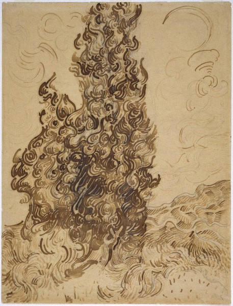 Cypresses Reed pen, graphite, quill, and brown and black ink on wove Latune et Cie Balcons paper June 1889 61.9 x 47.3 cm brooklyn