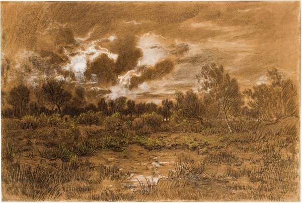 La lande aux genêts  19e siècle  Fusain, lavis brun, rehauts de blanc et de vert sur papier beige marouflé sur toile © Musée Fabre - Montpellier.jpg
