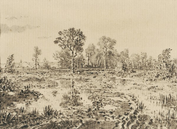 Mare parmi les bruyères c. 1862 pen and ink with wash on paper 11.75 x 15.24 cm.jpg