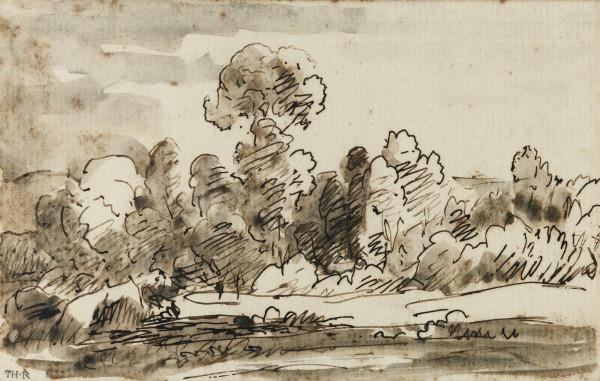 TREES AND ROCKS Plume et encre brune rehaussée de lavis gris 12.5 x 20 cm pc.jpg