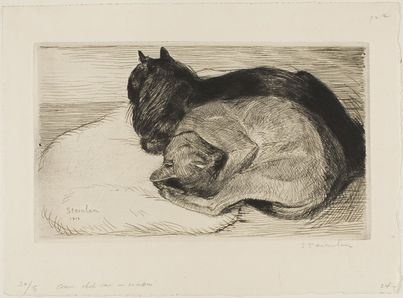 Two Cats on a Cushion, 1914