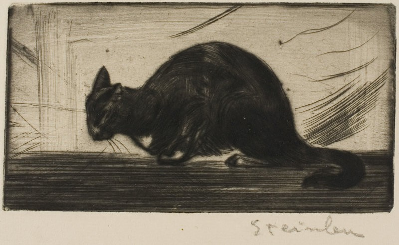 Cat Arching Its Back, 1898