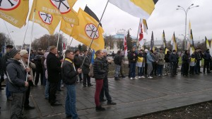 Много разных партий и движений на Русском Марше в Пскове