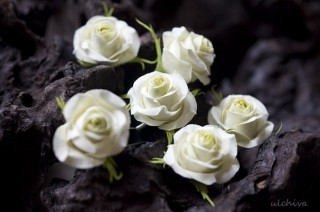 Серьги чайная роза