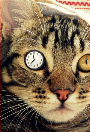 Часы в глазе - копия