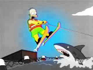Homer Jump Shark обр