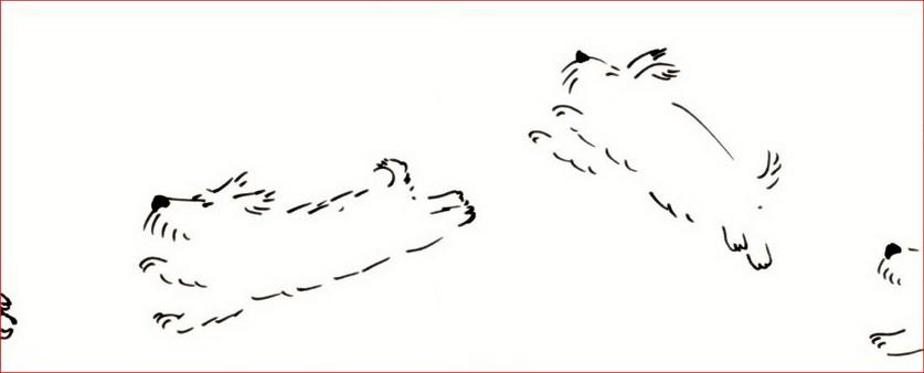 Снимок скачкоргап