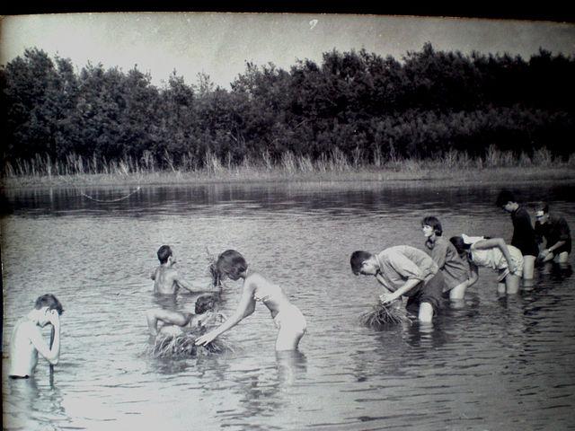 За работой на озере.Установка кочек в воду