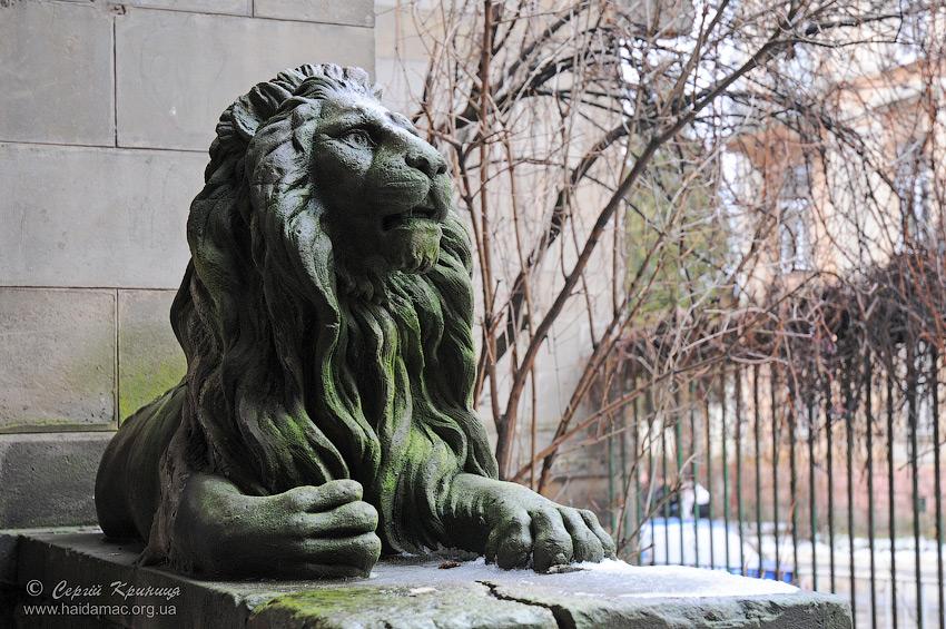 ще один львівський лев