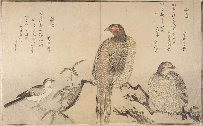 Утагава Утамаро «Медный фазан и трясогузка». Горная птица, о которой идёт речь в этом хайку, это как раз фазан. Однако он записывается иероглифами 山鳥, что дословно означает «горная птица»