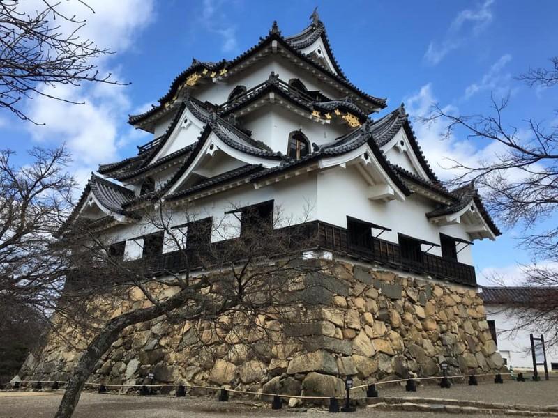 Знаменитый замок Хиконэ тоже находится в префектуре Сига