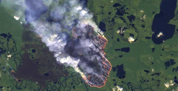 Бразилия: Пожары для европейского фастфуда