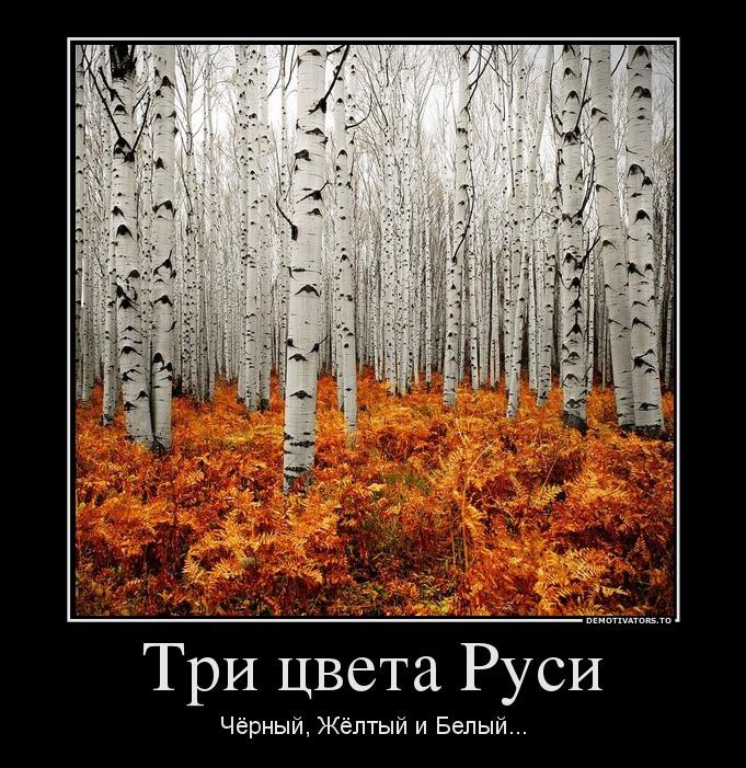 Три цвета Руси