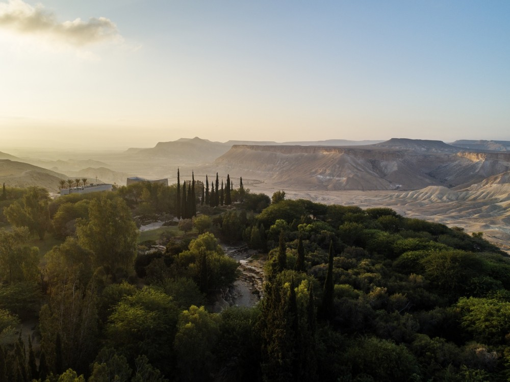 Такой вот оазис в пустыне Негев