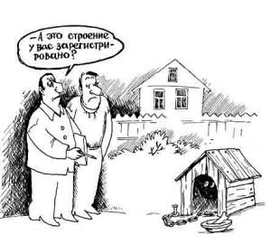 nalog_im