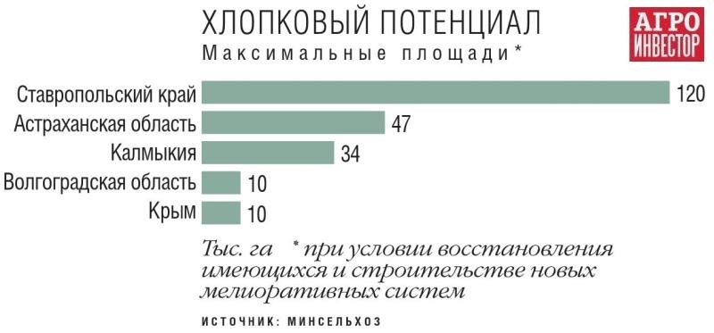 Стратегическое сырье. Нужно ли развивать производство хлопка в РоссииАлена Белая  Агроинвестор  5 июня 2019