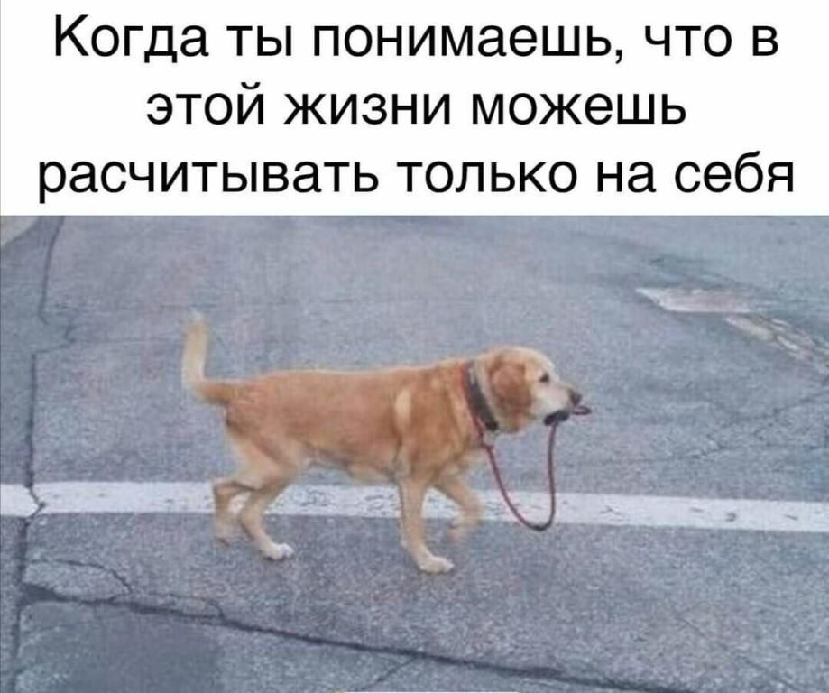 ОТ ДРУЗЕЙ КОПИРОВАН!