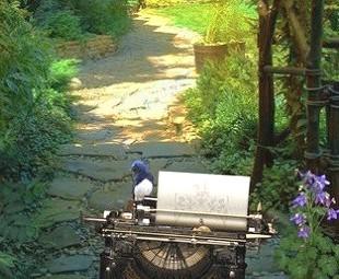 typewriterBirdsBanner2