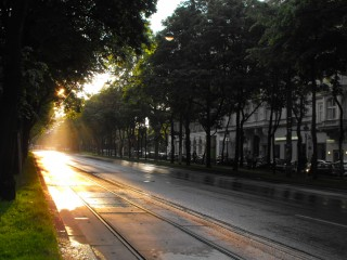 Well, some of Vienna's road, in sunset, and so one.