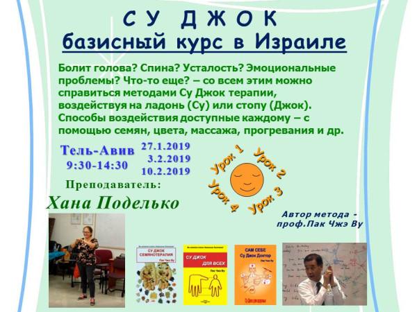 su-jok- course basis- rus-реклама1-1-1-зеленый