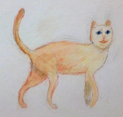 «Кот». Рисование с натуры. Цветные карандаши. Маша, 10 лет.