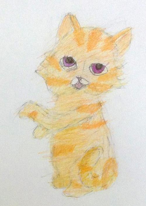 «Кошка». Рисование с натуры. Цветные карандаши. Аня, 5 лет.