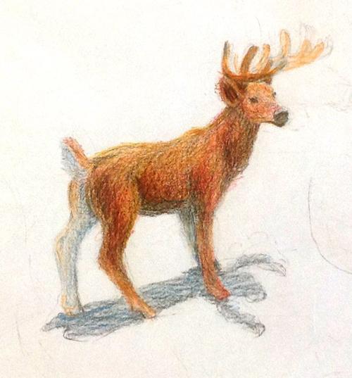 «Олень». Рисование с натуры. Цветные карандаши. Даша, 14 лет.