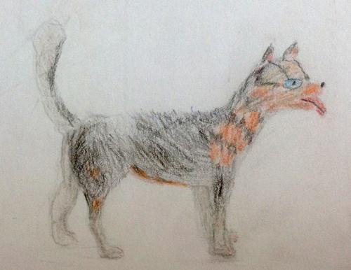 «Собака». Рисование с натуры. Цветные карандаши. Женя, 9 лет.
