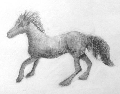 «Лошадь». Рисование с натуры. Простые карандаши. Люда, 15 лет.
