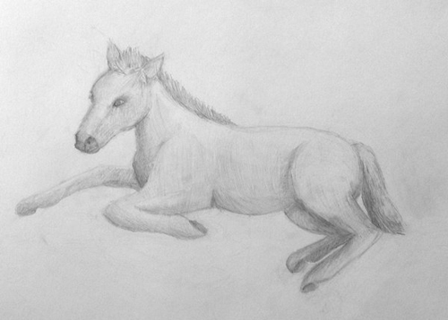 «Пони». Рисование с натуры. Простые карандаши. Полина, 15 лет.