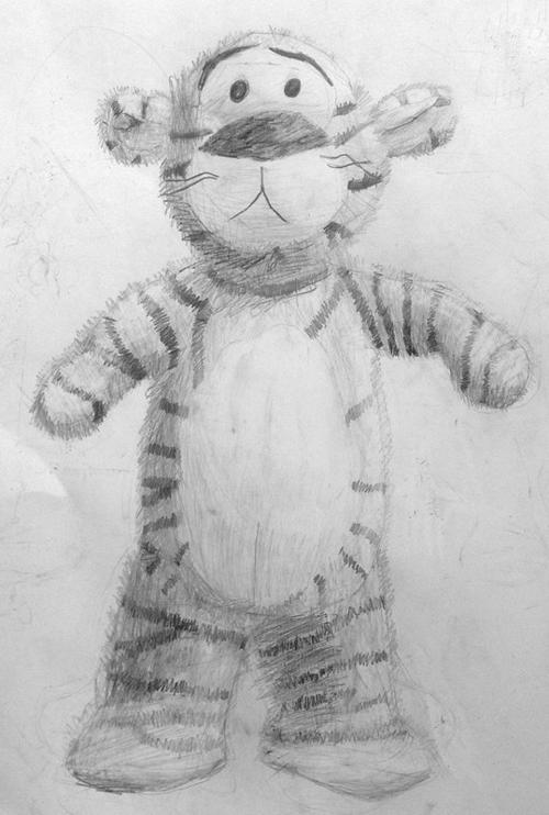 «Тигр». Рисование с натуры. Простой карандаш. Настя, 8 лет.