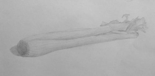«Сельдерей», карандаш. Юля, взрослые