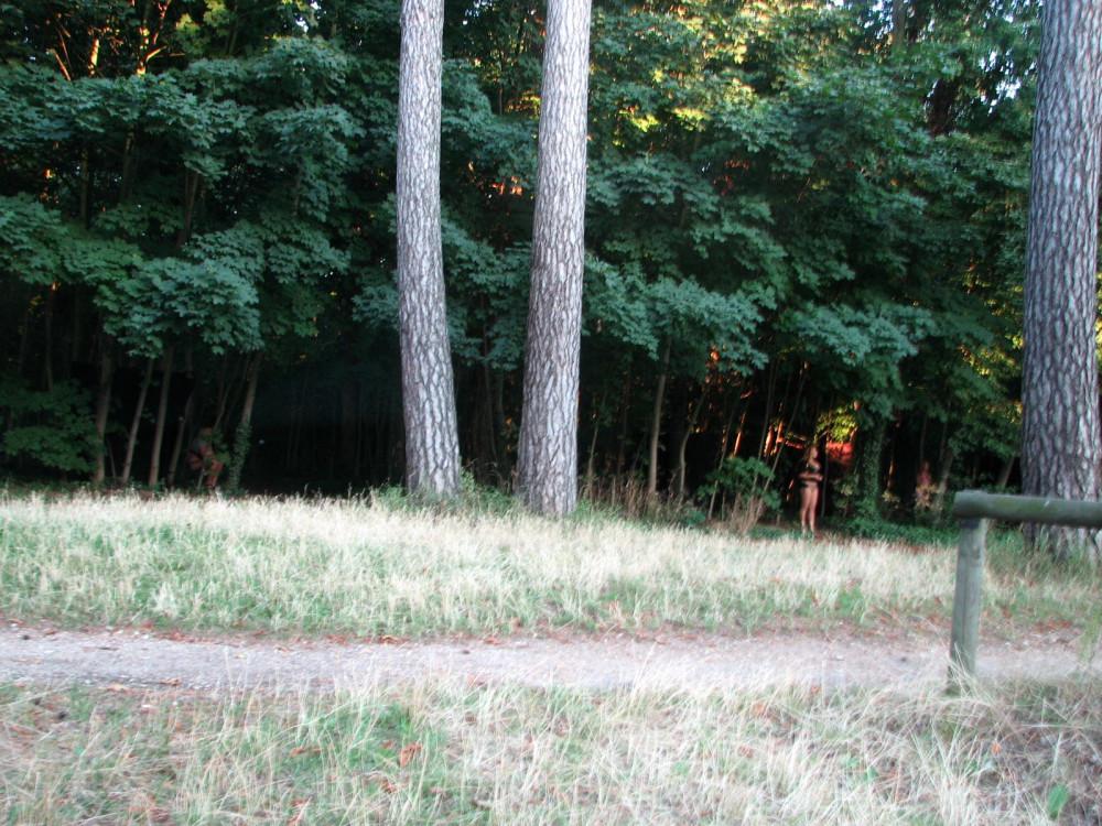 Булонский лес транссексуалы