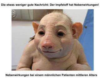 Impfung gegen Schweingrippe 2
