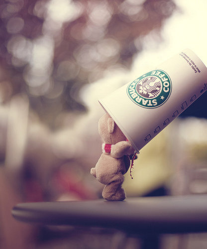 99px_ru_photo_19335_plushevij_mishka_zagljadivaet_v_stakan_starbucks_coffee