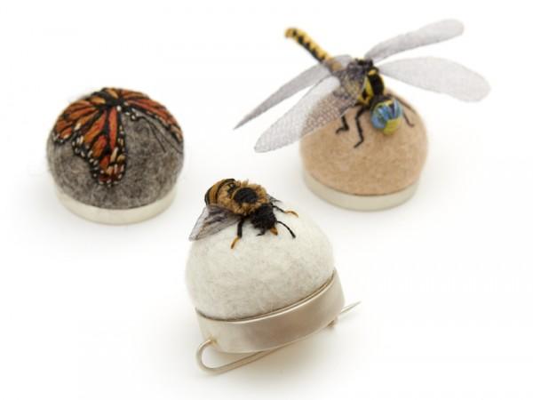 Коллекция из насекомых своими руками