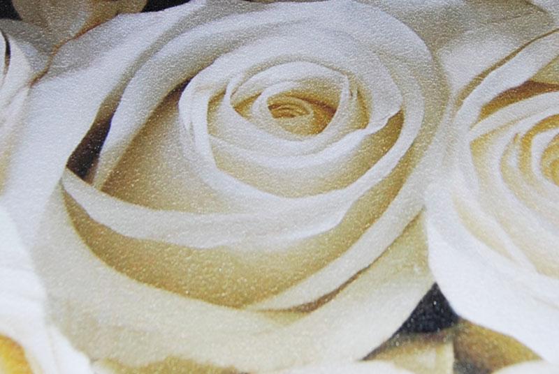 fragment-rose