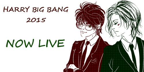 Harry Big Bang Banner