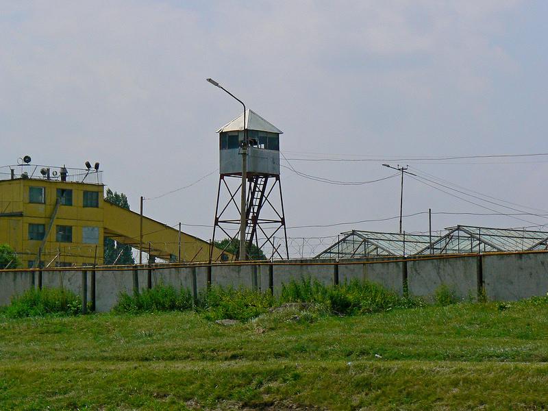 P1350141