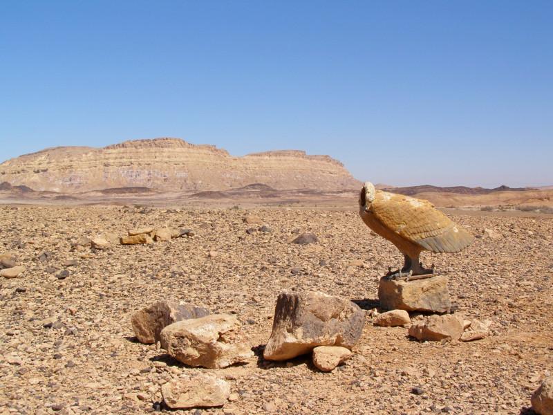 Израиль. Пустыня Негев: haydamak — LiveJournal