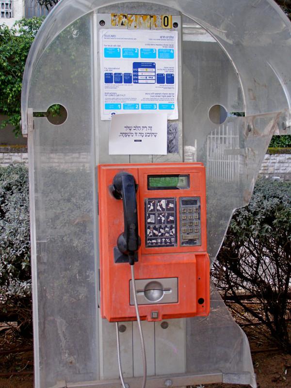 P3100599.JPG