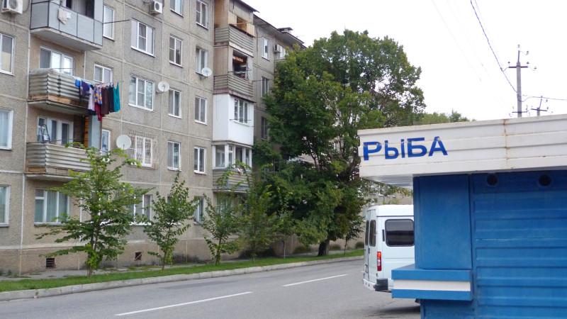 P1320503.JPG